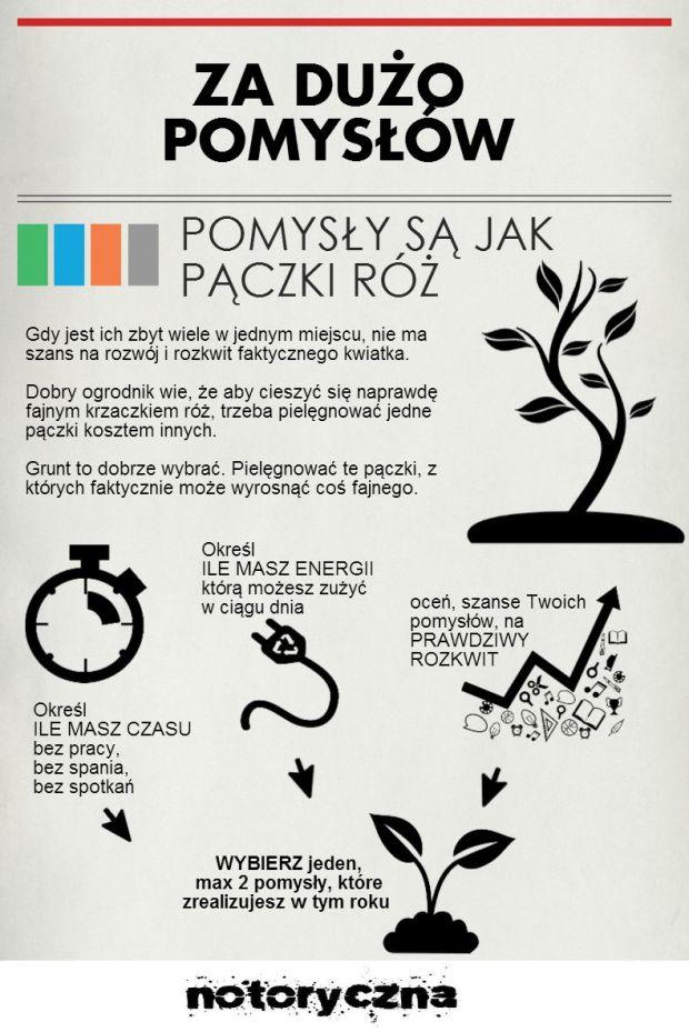 paczki roz23